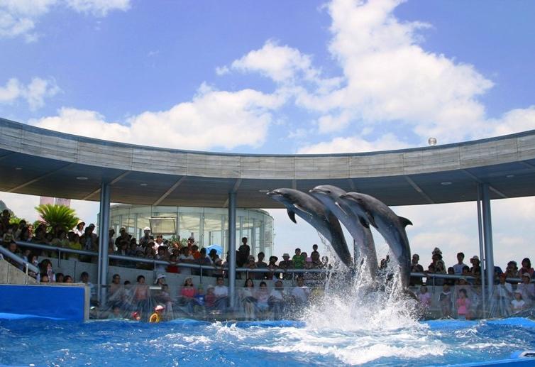 Umi Tamago 大分海洋宮殿水族館